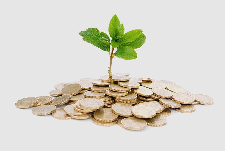 Возможность получения стабильного гарантированного дохода
